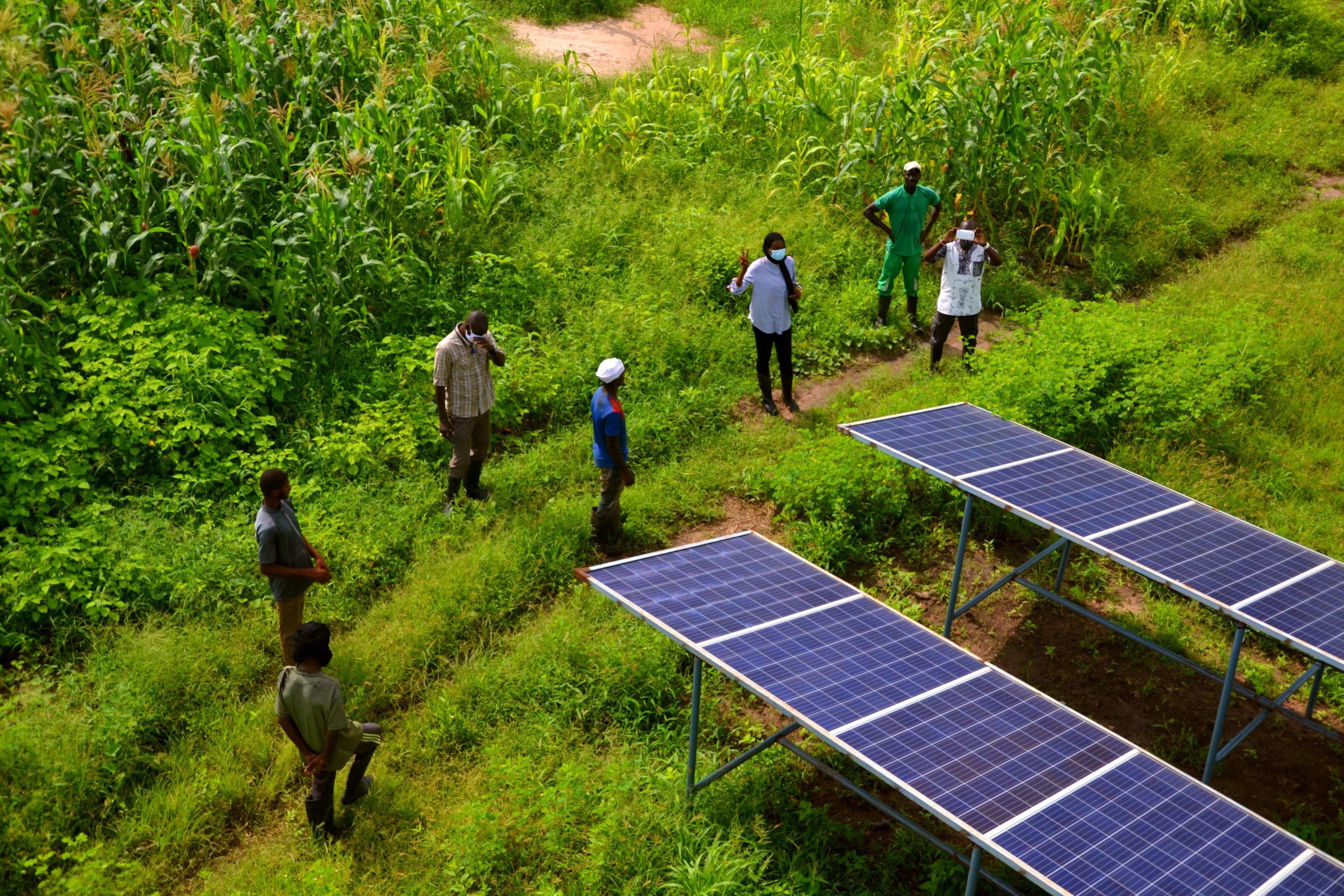 Personen schauen sich Solaranlagen an