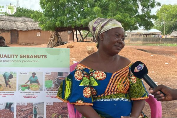 Comfort Bugri: Trainings for a shea collector in Ghana