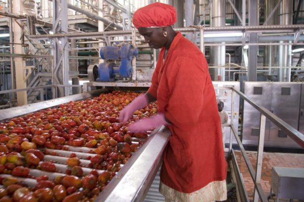 The Facility « Investing for Employment » in Senegal