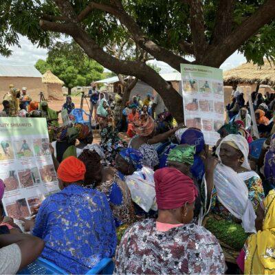 Improving Women Shea Collectors' Capacity in Ghana